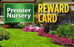 reward-card