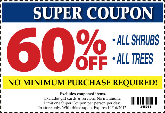 60 Off SUPER Coupon