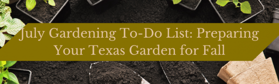 July Gardening To-Do List: Preparing Your Texas Garden for Fall