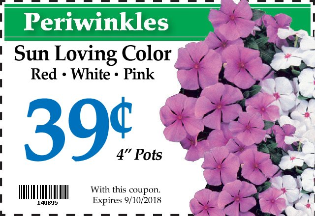 Periwinkle coupon
