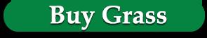 Buy St. Augustine Grass Sod