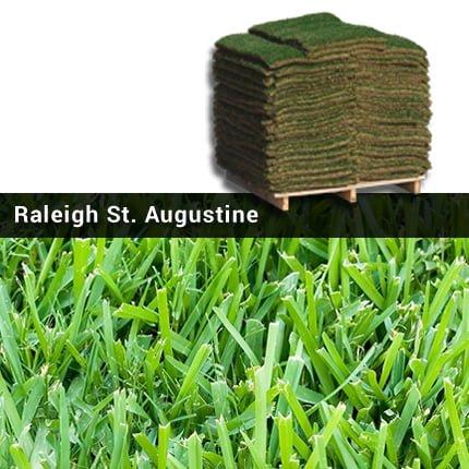 Raleigh St Augustine Gr Sod Pallet